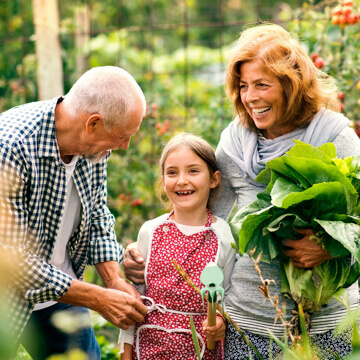 Grandparents gardening with their granddaughter